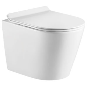 DSW-WHE01W Wall Mounted Toilet Image